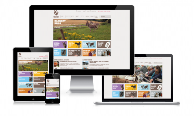 The Donkey Sanctuary Website