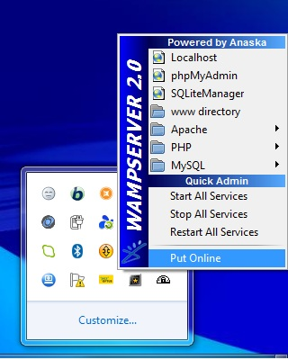 Step 5 - Putting WAMP Server Online | Drupal org