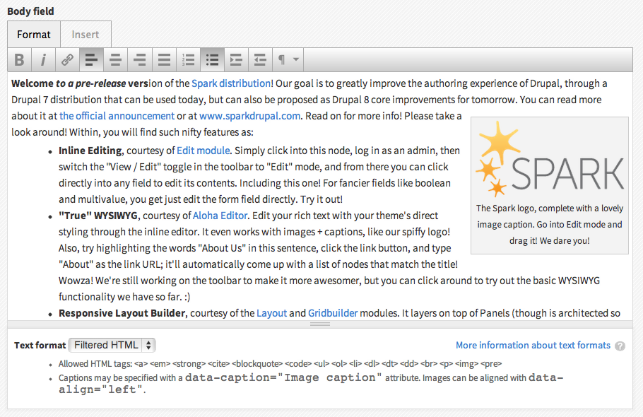 Screenshot of Spark distribution showing Aloha Editor on the site back-end form.