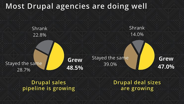 Drupal Agency Growth