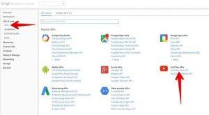Youtube Gallery | Drupal 8 guide on Drupal org