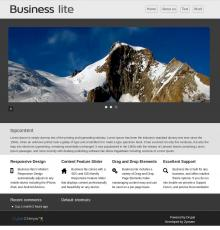Business Lite Home page