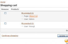 The cart shown with formatted CCK Attributes