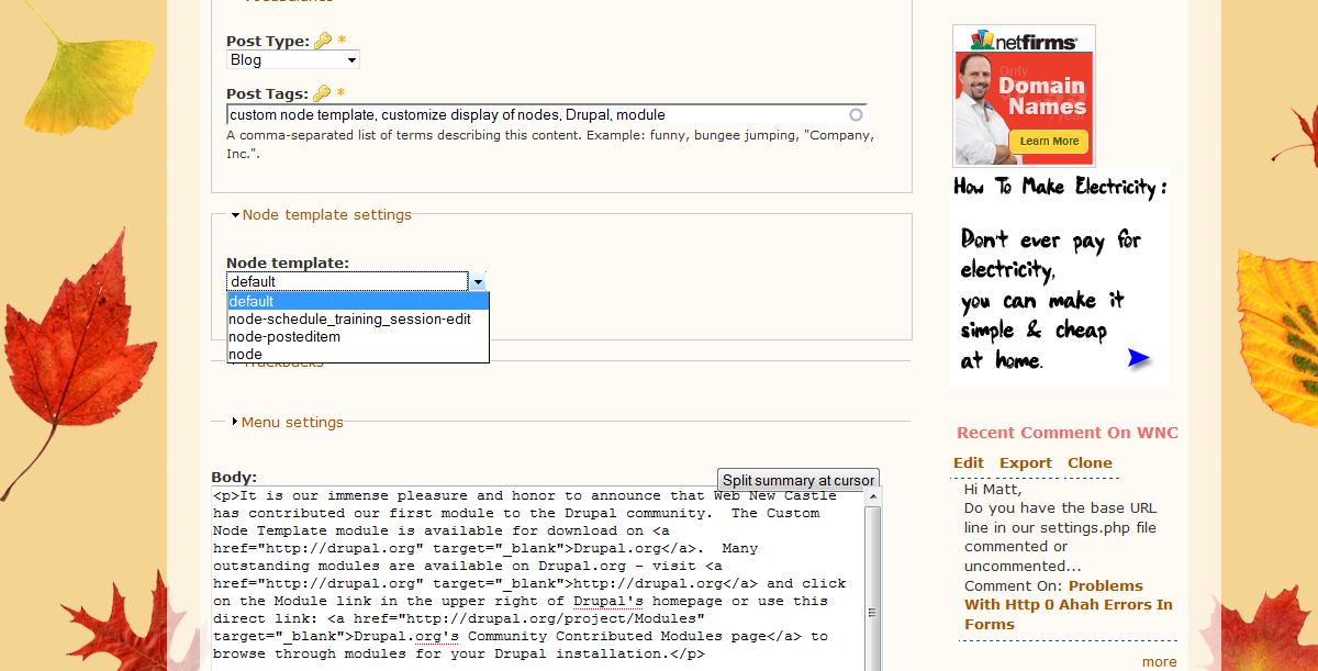 Custom node template drupal custom node template screenshot maxwellsz