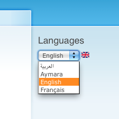 Language Switcher Dropdown with Language icons