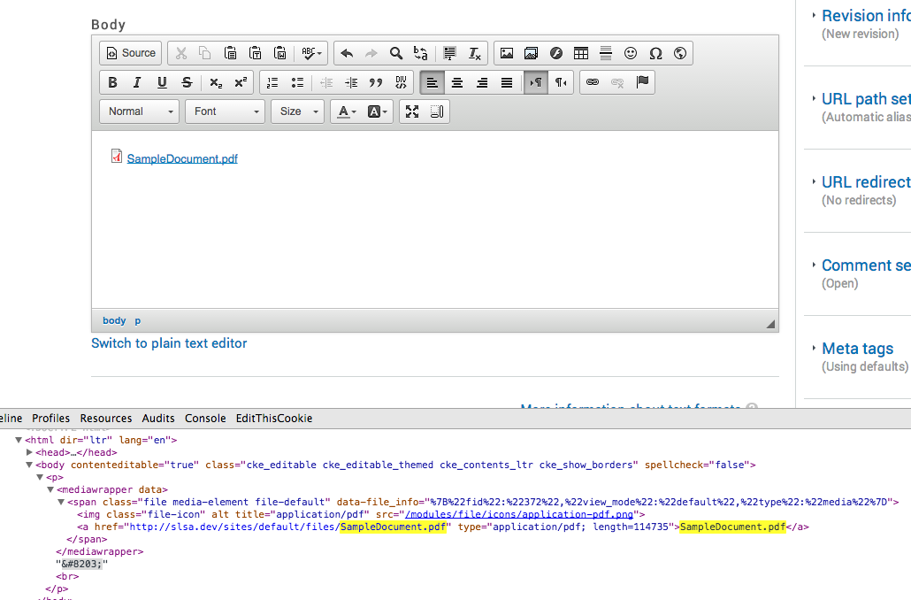 Link Icon To Media Document Is Stripped Out By Ckeditor Before