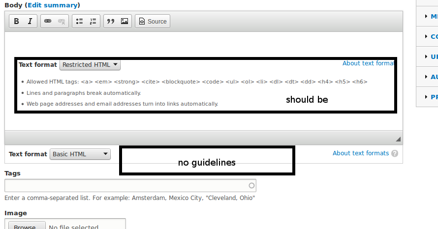 Formatting guidelines are not shown for textareas without WYSIWYG