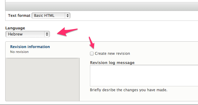 Screenshot of a custom block edit form. The language select box is indicated as well as the new revision checkbox.