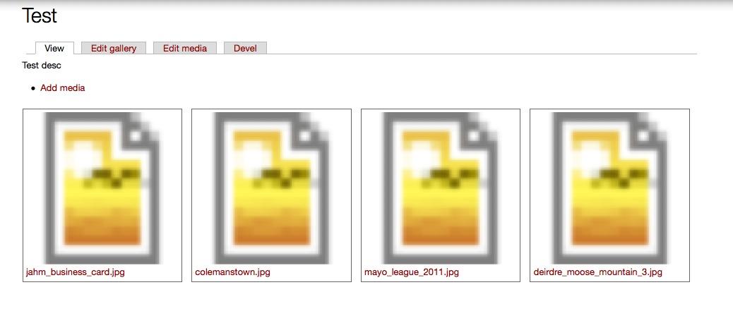 media-gallery-test.jpg