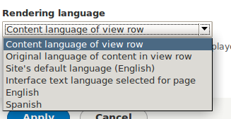 Screen shot of views render language settings with patch