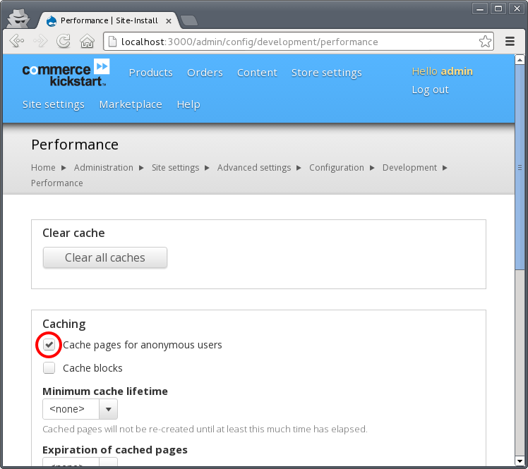 Screenshot with drupal performance settings