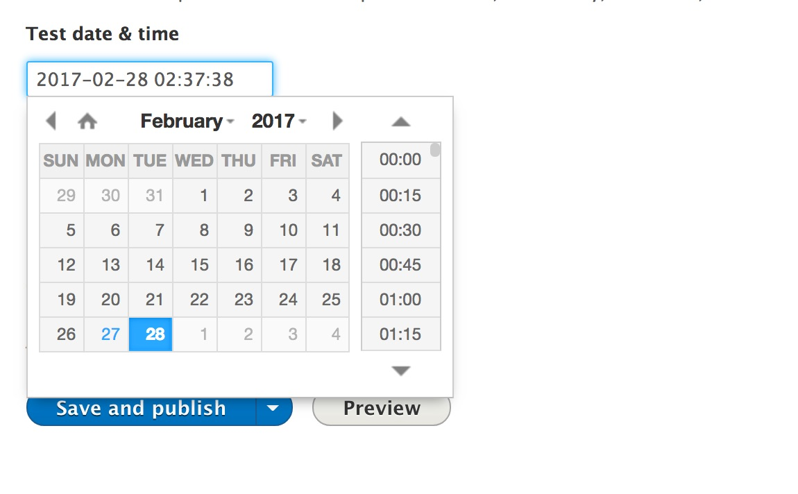 Single Date Time Picker | Drupal org