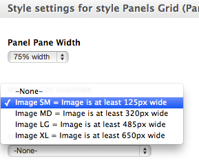 Select Image Sizes for a Panel Pane