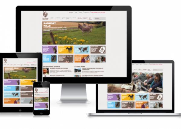 The Donkey Sanctuary Website