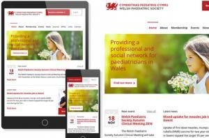 Welsh Paediatric Society - Drupal Website Homepage by Website Express