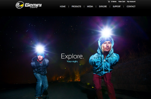 Gemini Lights Website Screenshot