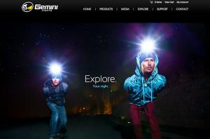 Gemini Lights Website Screenshot