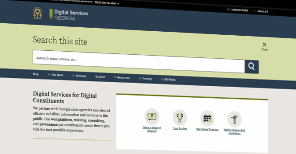 Digital Services Georgia website