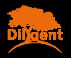 Dilygent