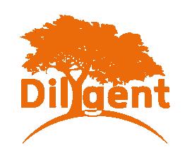 Dilygent: Web development experts | Talented minds