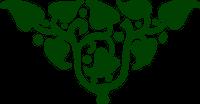 Triangulus Logo