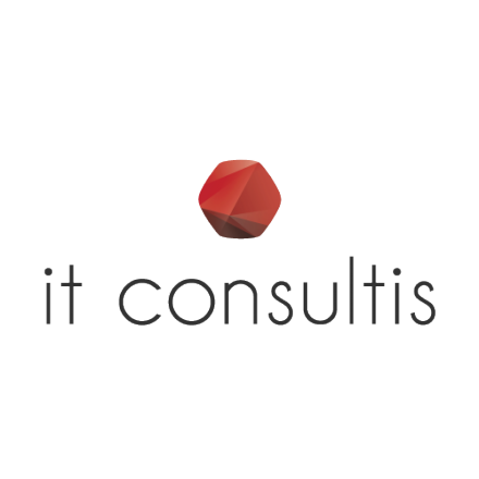 IT Consultis logo