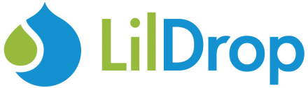 LilDrop Consulting logo image