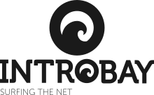 Introbay - Surfing the Net