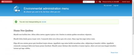 Environmental administration menu masquerade