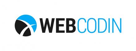 WebCodin - The Best Team for Custom & CMS-based Development