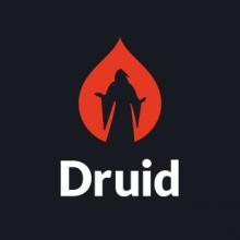 Druid Logo