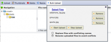 IMCE SWFUpload 2.x in IMCE interface with files ready to upload