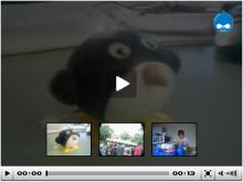 FLV Media Player