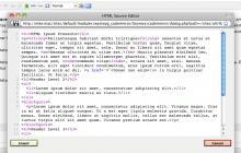 Screenshot of source editor