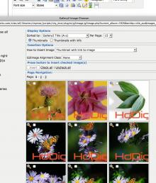 Screen shot 2010-04-04 at 4.38.48 PM.png