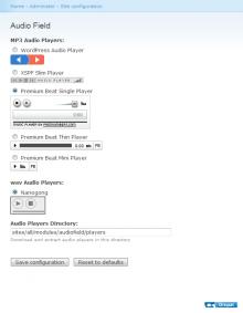 Audiofield admin form