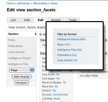 Building an Apache Solr Facet with Facet Builder
