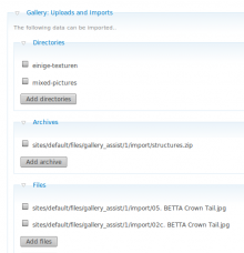 gallery-uploads-import-helper.png