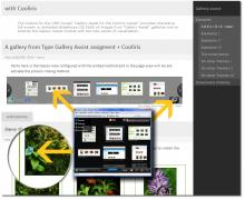 Shows you Gallery Assist images through the Cooliris flash player or viewer.