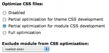 Screenshot of IE CSS Optimizer form