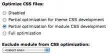 Screenshot of IE CSS Optimizer form
