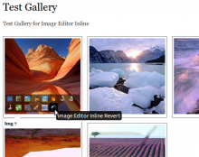 Image Editor Inline with Media Gallery