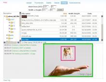 IMCE Crop Screenshot