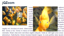 jqzoom-screenshot.png