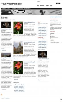 prosepoint_demo_screenshot.png