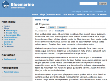 Screenshot of the Bluemarine theme