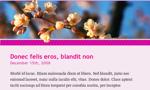 Cherry Blossom theme screenshot