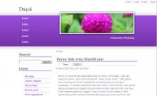 Screenshot for the Spring Bloom Drupal theme.