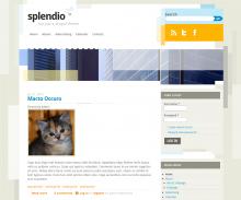 Splendio Screenshot 1