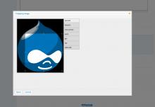 EPSA Crop - Screenshot
